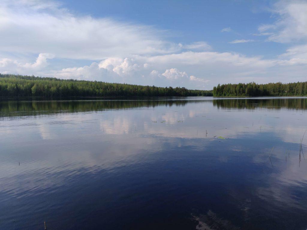 Suomi Liputtaa Luonnolle Ensimmäisenä Maana Maailmassa | Suomen Luonnon Päivä